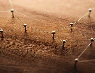 pegs in wood