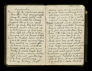 diary pages