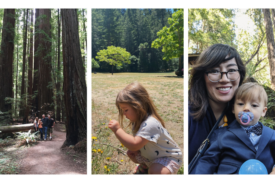 Three images including a family posing in front of tall trees, a little girl crouched in a field, and a mother and son posing in the woods