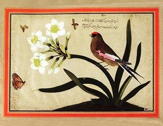Flower and nightingale
